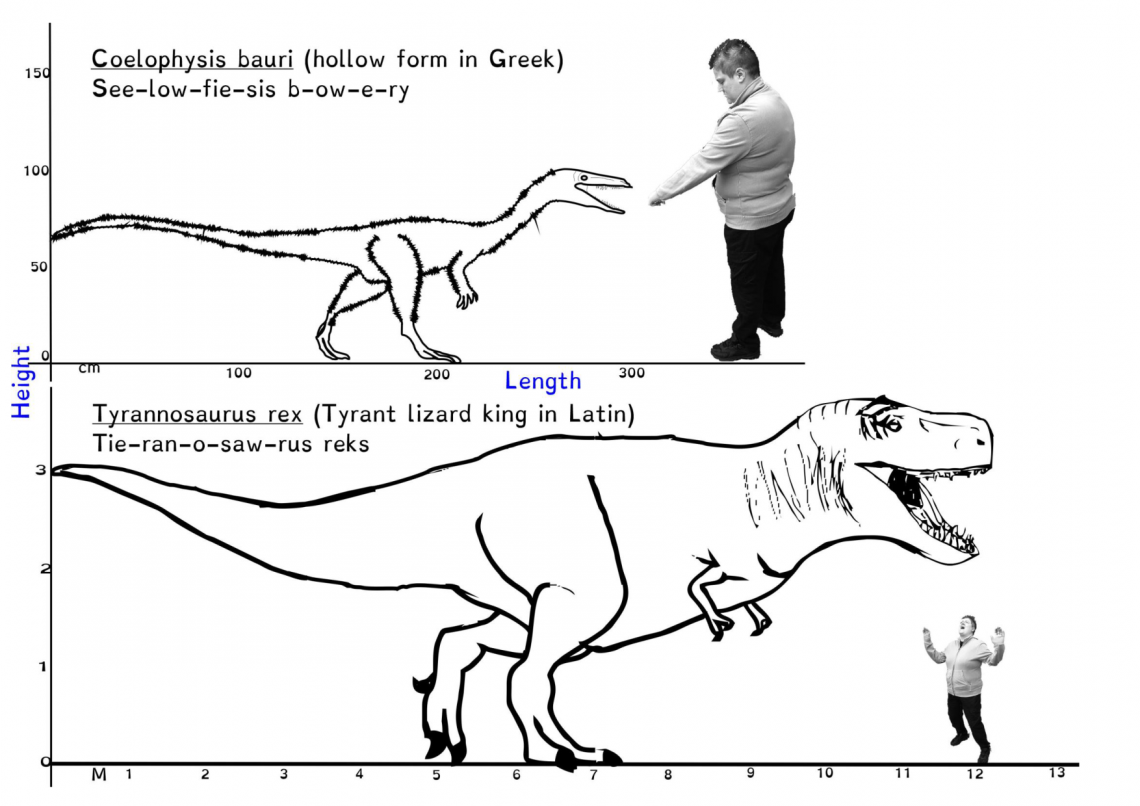 Mesozoic Maths-4