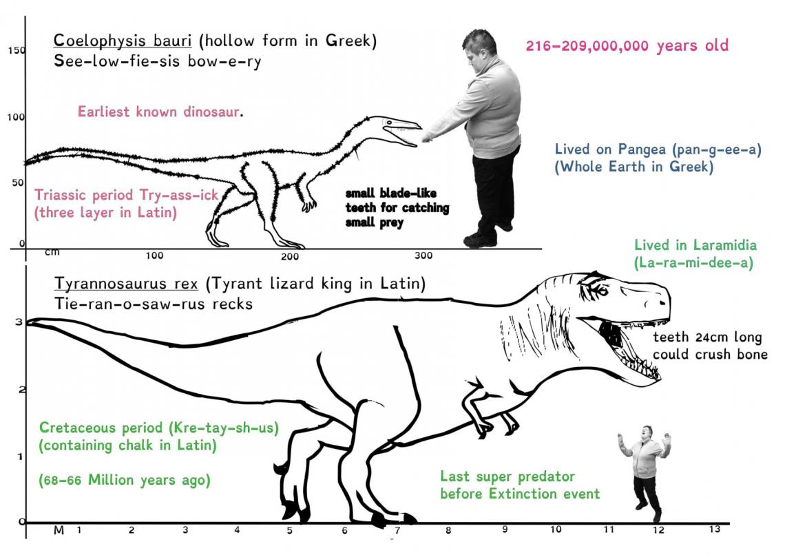 Mesozoic Maths-5