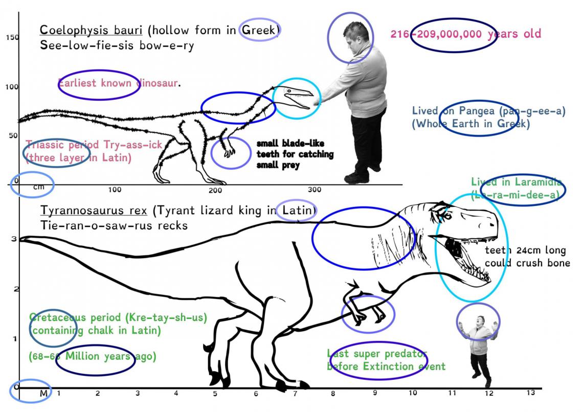 Mesozoic Maths-7